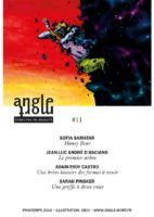 Angle Mort numéro 11 - Sofia SAMATAR