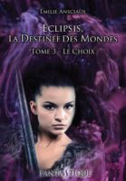 Le Choix - Emilie ANSCIAUX
