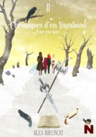 Chroniques d'un vagabond  - Alex BIREBENT