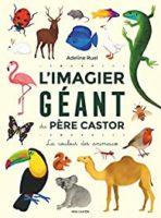 L'imagier géant du Père Castor : La couleur des animaux  - Adeline RUEL